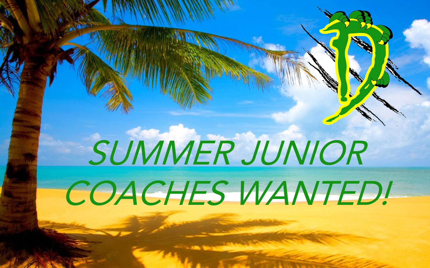 Summer junior coaches wanted!